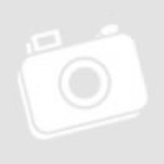 Tetőablak szúnyogháló (PVC)